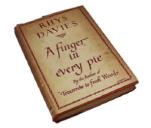 Book - finger in every pie
