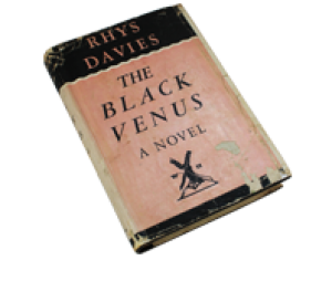 Book - The Black Venus
