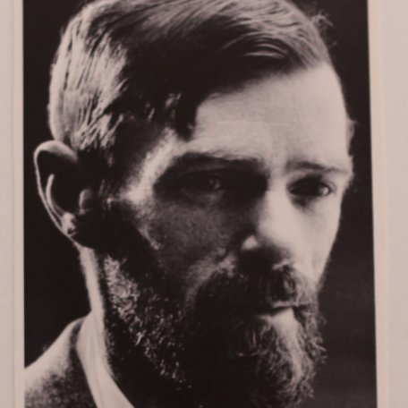 D. H. Lawrence, another of Rhys Davies' idols: Image 4